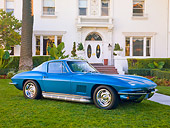VET 03 RK0671 01