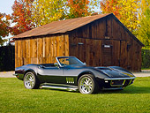 VET 03 RK0679 01