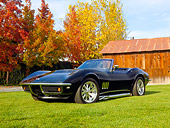 VET 03 RK0681 01