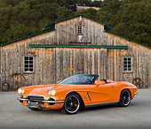 VET 03 RK0700 01
