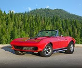 VET 03 RK0706 01
