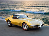 VET 03 RK0725 01
