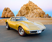VET 03 RK0728 01