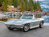 VET 03 RK0732 01