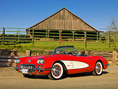 VET 03 RK0735 01
