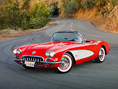 VET 03 RK0739 01