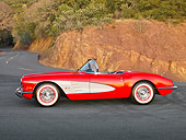 VET 03 RK0741 01
