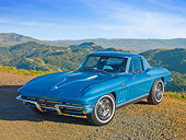 VET 03 RK0742 01
