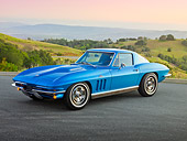 VET 03 RK0747 01