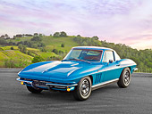VET 03 RK0748 01