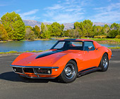 VET 03 RK0774 01