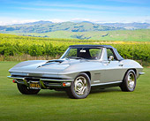 VET 03 RK0781 01