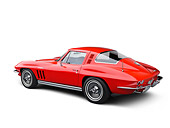 VET 03 RK0787 01
