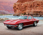 VET 03 RK0797 01