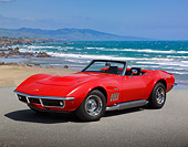 VET 03 RK0798 01