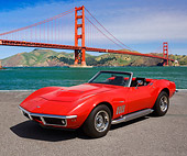 VET 03 RK0799 01
