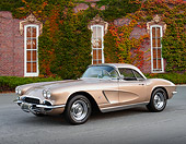 VET 03 RK0802 01