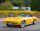 VET 03 RK0804 01