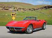 VET 03 RK0808 01