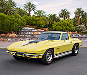 VET 03 RK0812 01
