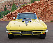 VET 03 RK0813 01