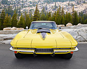 VET 03 RK0814 01