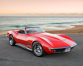 VET 03 RK0817 01