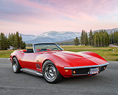 VET 03 RK0818 01