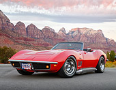 VET 03 RK0820 01