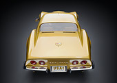VET 03 RK0831 01