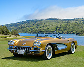 VET 03 RK0835 01