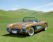 VET 03 RK0836 01
