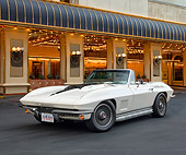 VET 03 RK0838 01