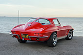 VET 03 RK0845 01