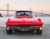 VET 03 RK0847 01