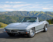 VET 03 RK0850 01