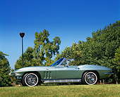 VET 03 RK0002 04