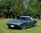 VET 03 RK0004 01