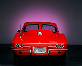 VET 03 RK0062 01