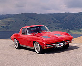 VET 03 RK0065 04