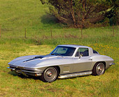 VET 03 RK0071 01