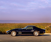 VET 03 RK0198 03
