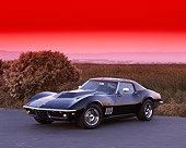 VET 03 RK0203 01