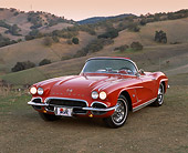 VET 03 RK0221 01