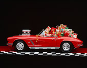 VET 03 RK0242 02