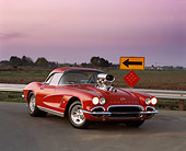 VET 03 RK0253 05