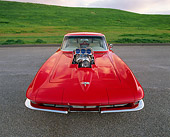 VET 03 RK0263 06