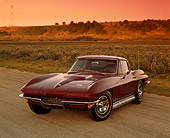 VET 03 RK0273 02