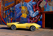 VET 03 RK0284 04