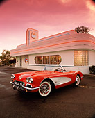 VET 03 RK0287 07